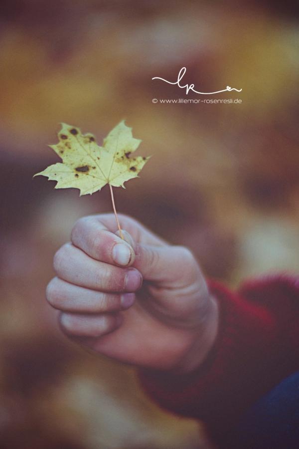 Herbst, DIY, Rosenresli, Herbstgirlande, Herbstblatt, Kinderbeschäftigung, mit Kindern den Herbst erleben, Waldorf, Natur, Lillemor Fotografie, Bietigheim-Bissingen, Familienfotografie