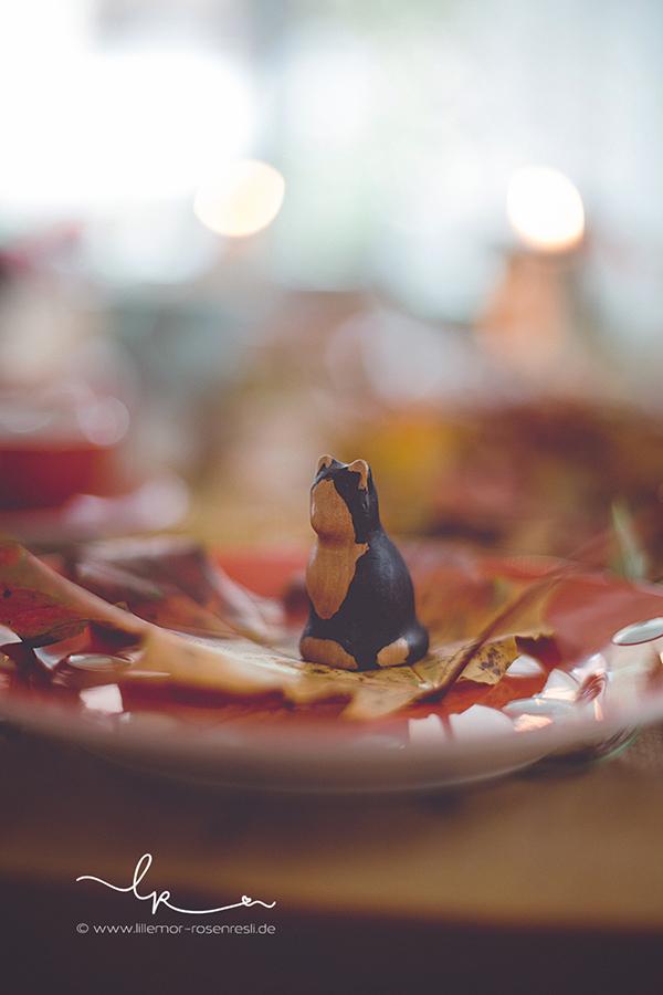 Geburtstagstisch, Waldorf, Waldorfkinder, Waldorffamilie, Herbstgeburtstag, Buntspechte Holzfiguren, Katze, Natur, Rosenresli, Lillemor Fotografie. Bietigheim-Bissingen