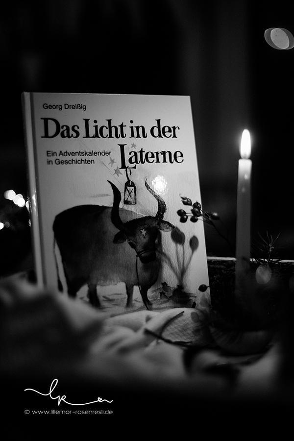 Adventskalender, Geschichten vorlesen, Licht in der Laterne, Waldorliteratur für die Adventszeit, Lillemor Fotografie Bietigheim-Bissingen