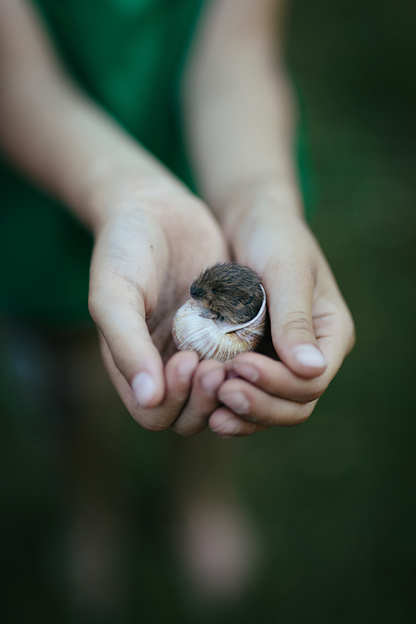 Mäusebeerdigung, Babymaus in Schneckenhaus, Kindheit, authentische Familienfotografie, Lillemor, Michele Brunnmeier, Bietigheim-Bissingen, Ludwigsburg