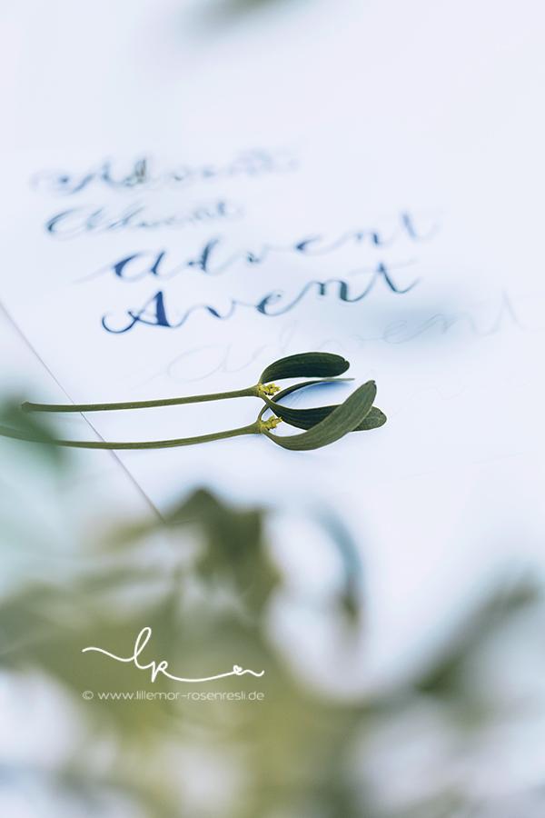 Kalligraphie, Advent, Mistel